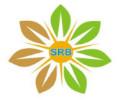 SRB Power India Pvt Ltd