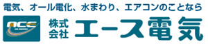 Ace Denki Co., Ltd.