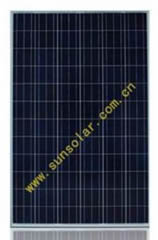 SUN260P-24 260