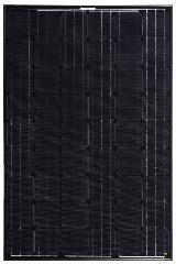 XS54 Black/Black 220~230