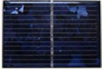LS65*45-5P 0.35