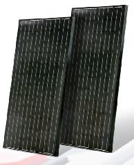 EGM Black 190 180~190