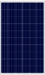 LN260P(250-265W Poly)