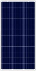 LN300P(300-320W Poly)