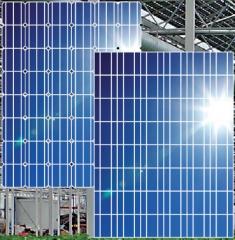 Greenhouse Module M315 315