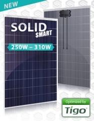 Soli Tek SOLID SMART 250 - 310W