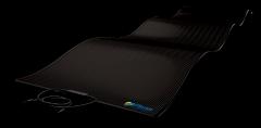 Flexible solar module