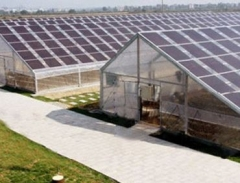 Agriculture Solar PV System